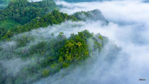 Velux grupa smanjuje ugljični otisak